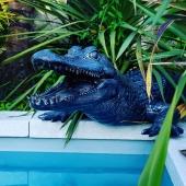 🐊🖤  Merci pour la photo @elnos87 🤙🏻  #crocodile #lafermeauxcrocodiles #piscine #decorationinterieur #decorationexterieur #craquelé #personnalisation #surmesure #statueenresine #madeinfrance🇫🇷