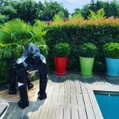 «Notre gorille se porte à merveille, il a pris place à l'extérieur et on l'adore ❤️»  Merci @mra69lyon   #gorille #gorilles #art #statue #nevergiveup #animaux #zoo #qualitésupérieur #handmade👌#madeinfrance🇫🇷 #madewithlove❤️ #resinstatue #peintureluxe #hautdegamme #decoaddict #decorationexterieur