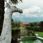 Une nouvelle SWENY (girafe douche) à vu le jour ! 🦒💦 Quel BONHEUR ☺️ Une œuvre unique et fonctionnelle qui donne beaucoup de charme à votre jardin 😁🌱 Merci @elnos87 Girafe : 205 cm finition marbrée / Garantie 5 ans / projet breveté.  #giraffelover #girafe #giraffeshower #girafedouche #SWENY #unique #brevet #ilovemyjob❤️ #handmade🎨🖌 #madeinfrance🇫🇷 #zoo #doucheexterieure #decorationexterieur #decoaddict #luxe