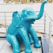 """🐘💧Quand tes clients t'envoient des photos accompagnées d'un joli message """"Un grand merci"""", ça fait chaud au cœur un 24 Décembre 💙  #elephant #commandepersonnalisée #decorezvosjardins #decoaddict #statueunique #zoo #clientsheureux #madeinfrance🇫🇷 #handmade🎨🖌 #ilovemyjob❤️ #hautequalité #lyon"""