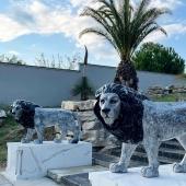 Émue  de voir nos rois de la jungle aussi bien mis en valeur par ce lieu magnifique ! Et vous que pensez vous du résultat ?!  #statueenresine #unique #uniquestatue #oeuvredart #decorationinterieur #decorationexterieur #hautedegamme #sur-mesure #roidelajungle🦁 #roilion #lion #handmade #ilovemyjob❤️ #jardín #piscineprivée #maisonmoderne #marbre #noiretblanc